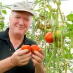 Cultivos en Hidroponia