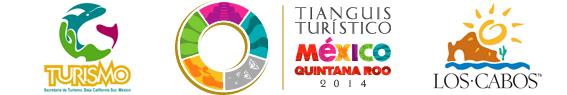 logo tianguis copy